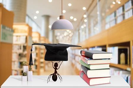 海南大学同等学力招生基本条件